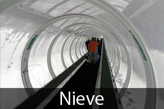 Sector nieve